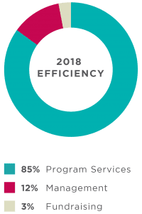 TechnoServe Financial Efficiency 2018 Annual Report